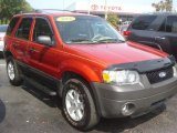 2006 Blazing Copper Metallic Ford Escape XLT V6 #66121633