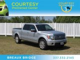 2010 Ingot Silver Metallic Ford F150 Platinum SuperCrew #66122563