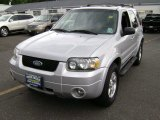 2006 Silver Metallic Ford Escape Limited #66207618