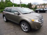 Ford Edge 2013 Data, Info and Specs