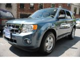 2010 Steel Blue Metallic Ford Escape XLT V6 4WD #66207952