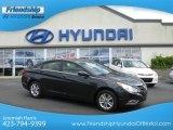 2013 Pacific Blue Pearl Hyundai Sonata GLS #66207556