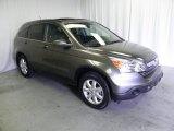 2009 Urban Titanium Metallic Honda CR-V EX-L 4WD #66338003