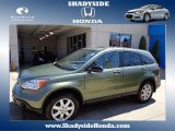 2009 Green Tea Metallic Honda CR-V EX 4WD #66337612
