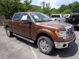 2012 Golden Bronze Metallic Ford F150 XLT SuperCrew 4x4 #66410040