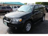 2006 Black Ford Escape Limited 4WD #66488234