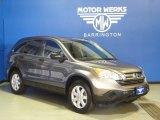 2009 Urban Titanium Metallic Honda CR-V EX 4WD #66487441