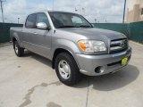 2005 Phantom Gray Pearl Toyota Tundra SR5 Double Cab #66487847