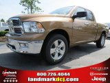 2012 Saddle Brown Pearl Dodge Ram 1500 Big Horn Quad Cab #66487667