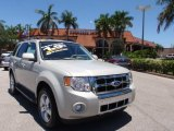 2009 Light Sage Metallic Ford Escape Limited V6 #66615631