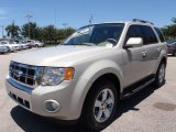2009 Ford Escape Light Sage Metallic