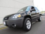 2006 Black Ford Escape XLT V6 4WD #66616223