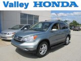 2010 Opal Sage Metallic Honda CR-V EX-L AWD #66615531