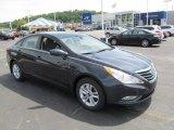 2013 Pacific Blue Pearl Hyundai Sonata GLS #66615431