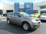 2010 Mocha Steel Metallic Chevrolet Equinox LS #66615784