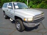 1997 Dodge Ram 1500 Light Driftwood Metallic