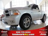 2012 Bright Silver Metallic Dodge Ram 1500 Express Regular Cab #66774049