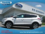 2013 White Platinum Metallic Tri-Coat Ford Escape SEL 2.0L EcoBoost 4WD #66820265