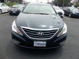 2013 Pacific Blue Pearl Hyundai Sonata GLS #66820251