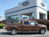 2012 Golden Bronze Metallic Ford F150 XLT SuperCrew 4x4 #66820178