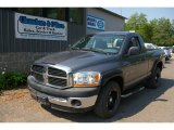 2006 Mineral Gray Metallic Dodge Ram 1500 ST Regular Cab #66820368