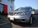2011 Platinum Graphite Nissan Murano SV AWD #66951868