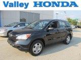2009 Crystal Black Pearl Honda CR-V LX 4WD #66951480