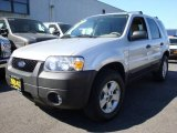 2006 Silver Metallic Ford Escape XLT V6 4WD #6562297