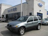 2006 Titanium Green Metallic Ford Escape XLT 4WD #6568605