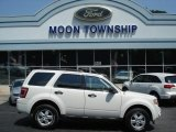 2009 White Suede Ford Escape XLT 4WD #66951792