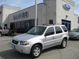 2006 Silver Metallic Ford Escape Limited 4WD #6568602