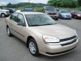 2005 Light Driftwood Metallic Chevrolet Malibu Sedan #67012132