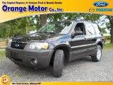 2006 Black Ford Escape XLT V6 4WD #67147154