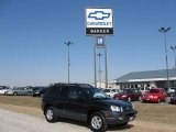 2003 Black Obsidian Hyundai Santa Fe GLS 4WD #6560658