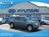 2010 Steel Blue Metallic Ford Escape Limited #67270840