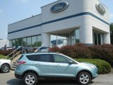 2013 Frosted Glass Metallic Ford Escape SE 1.6L EcoBoost #67340165