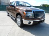 2012 Golden Bronze Metallic Ford F150 XLT SuperCrew #67340458
