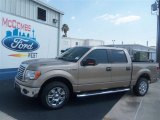 2012 Pale Adobe Metallic Ford F150 XLT SuperCrew #67429598