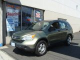 2009 Green Tea Metallic Honda CR-V LX 4WD #67430270
