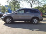 2009 Urban Titanium Metallic Honda CR-V EX-L 4WD #67430226