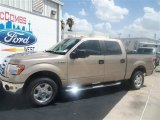 2012 Pale Adobe Metallic Ford F150 XLT SuperCrew #67493717