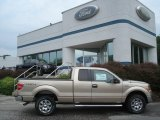 2012 Pale Adobe Metallic Ford F150 XLT SuperCab 4x4 #67493661