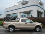 2012 Pale Adobe Metallic Ford F150 XLT SuperCab 4x4 #67493658