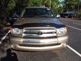 Desert Sand Metallic Toyota Tundra in 2003