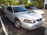 2002 Satin Silver Metallic Ford Mustang V6 Coupe #67493604