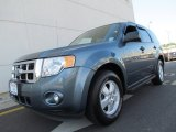 2010 Steel Blue Metallic Ford Escape XLT 4WD #67494402