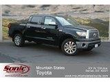 2012 Black Toyota Tundra Platinum CrewMax 4x4 #67493489