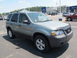2006 Titanium Green Metallic Ford Escape XLT 4WD #67493448