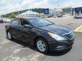 2013 Pacific Blue Pearl Hyundai Sonata GLS #67493438
