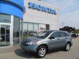 2010 Opal Sage Metallic Honda CR-V EX AWD #67566224